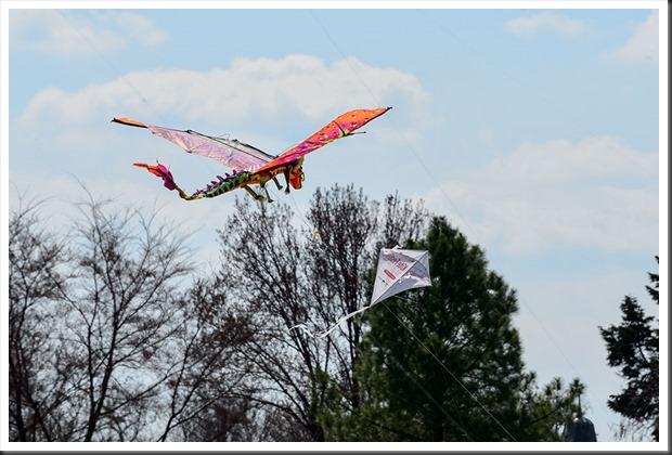 20130330-Kite-Festival-110