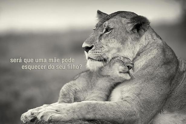 Tag Frases De Amor Filho E Marido