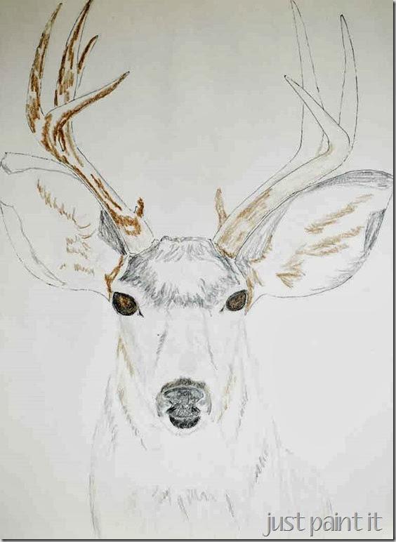 Deerhead-Sketch-A