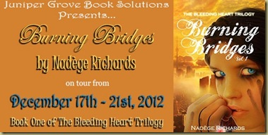 Burning Bridges Banner