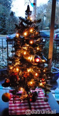 Dec 7 2014 Christmas trees 001