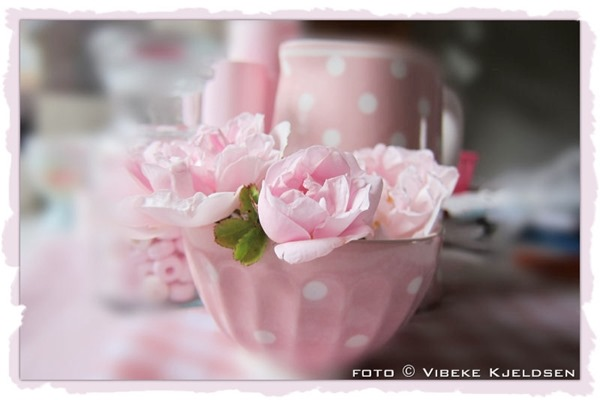 rose_StanwellPerpetual_02