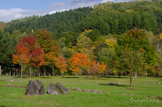 2013-10-12 Furano Fall Colors 024