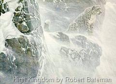 High_Kingdom_Snow_Leopard
