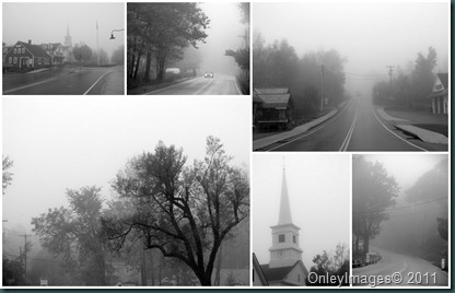 fog collage1014