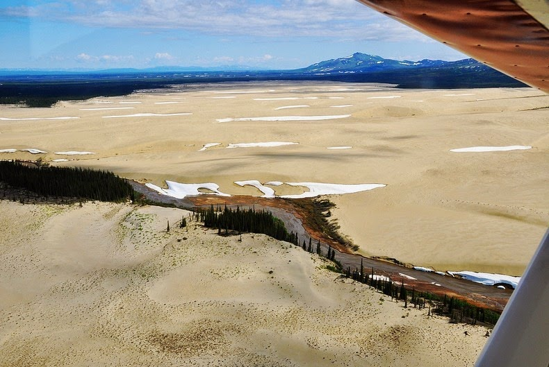 great-kobuk-sand-dunes-9