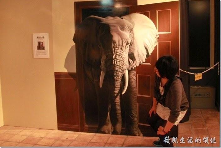 豪斯登堡-超級錯覺藝術。媽!這大象跑出來了。