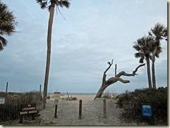 02 Edisto Beach