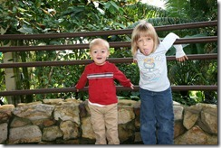 2011-11-04 Butterfly Pavilion (6)