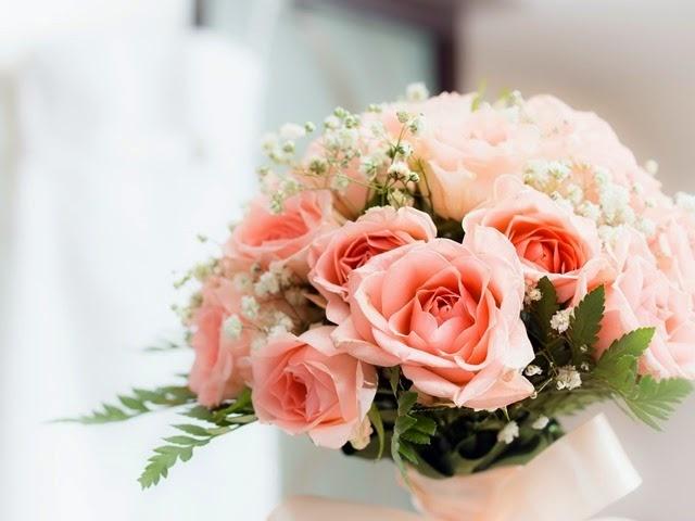 rosas floral roses flores rositas