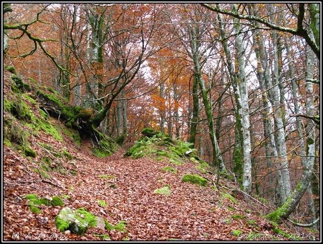 Lantz otoño 038