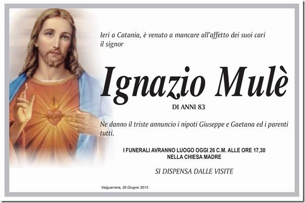 MULE IGNAZIO