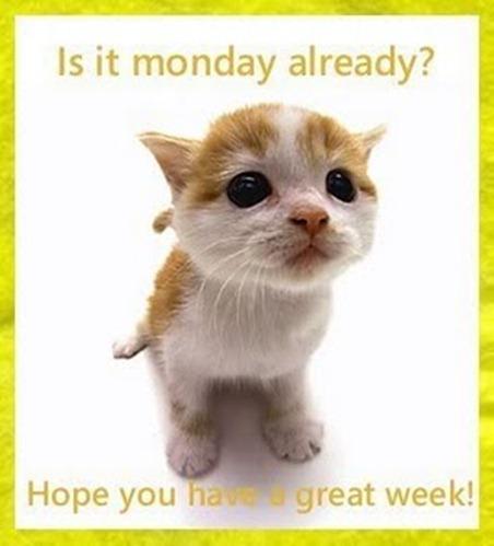 Monday009
