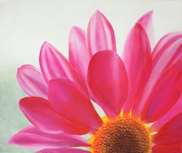 pink daisy teresa dye