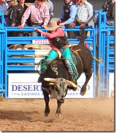 tucson rodeo 095 cropped