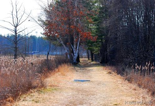 2. marsh trail-kab