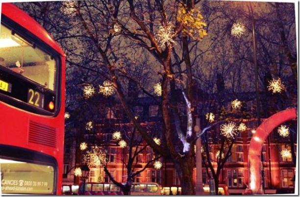 best-christmas-lights-houses-33