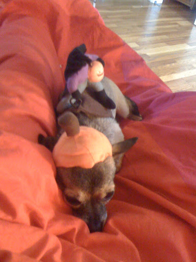 Minnow has a headless horseman costume, too. But I digress...