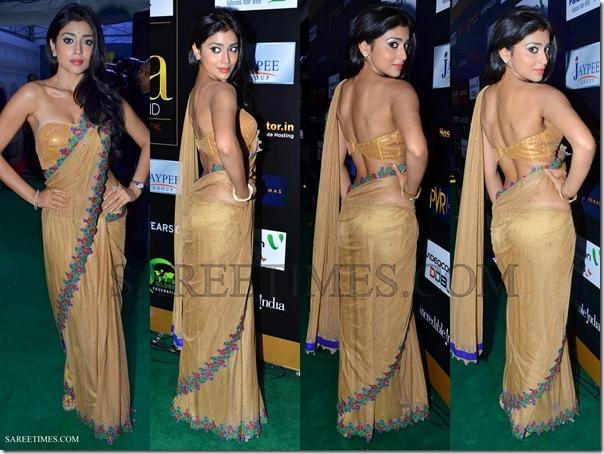 Shriya_Manish_Malhotra_Saree_IIFA_Awards