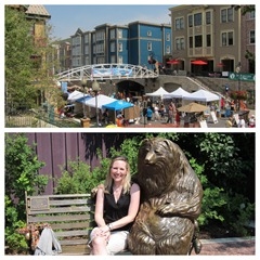silly market diptic