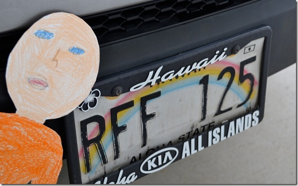 Flat Hawaii