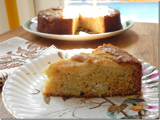 rustic-apple-yogurt-cake-torta-di-mele-allo-yogurt-3