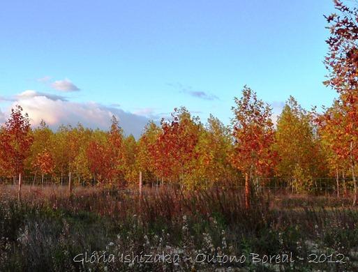 Glória Ishizaka - outono 2012 - 13