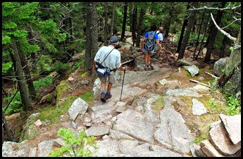 02q5 - Pemetic Mtn Hike - Hiking down the south ridge - Be More Careful