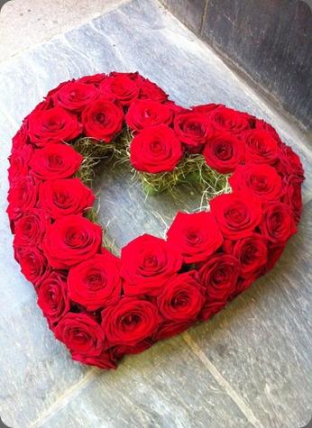 313563_10150363319371992_474039276_n love lily