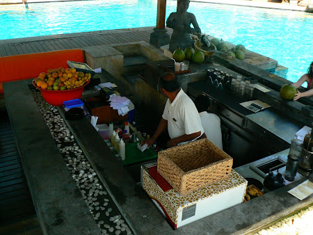 Hotel Hyatt Sanur pool bar