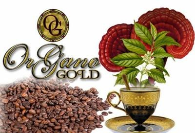 ganoderma cafe
