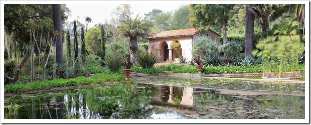 130403_Lotusland_lotus_pond_pano