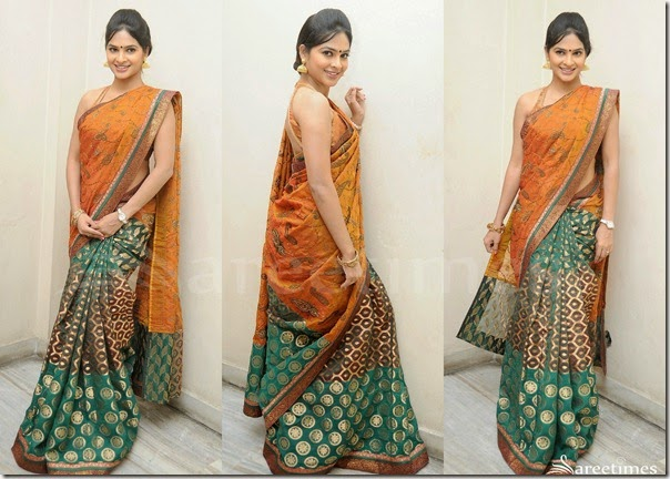 Madhumita_Half_and_Half_Saree