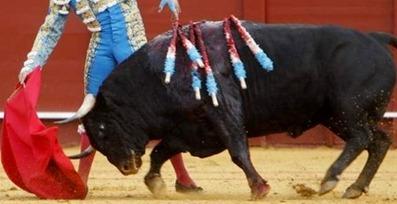 toros-indulto-un-toro-de-nunez-del-cuvillo-indultado-por-manzanares-en-la-maestranza-02$599x0