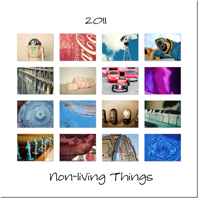 2011-non-living-things-phot