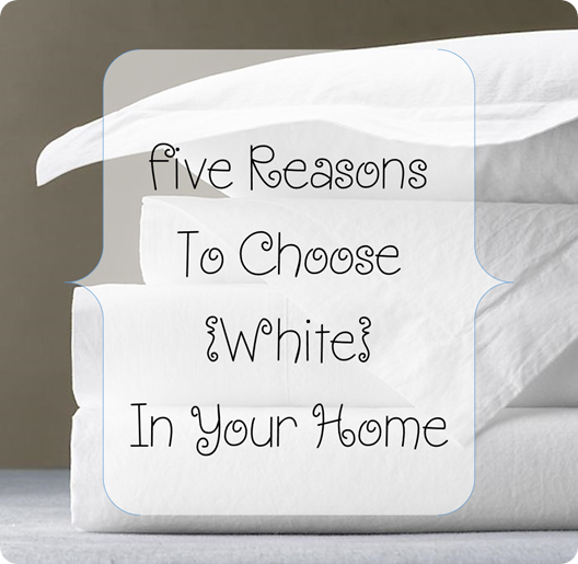 white sheet blog header