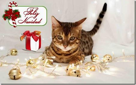 feliz navidad 3 1