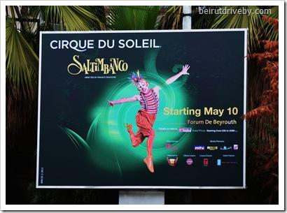 cirque du soleil (3)
