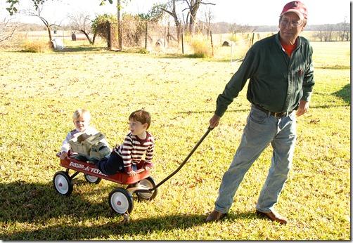 grandpa pulling boys