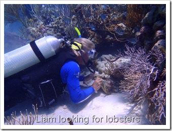 Exuma Sea Park Dive 128