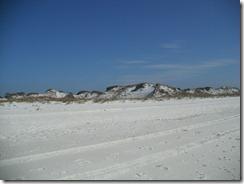 SaintAndrewsBeach Sand Dunes