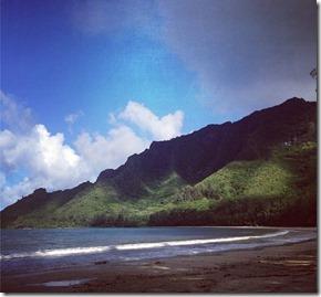 Hawaii Autora Gardenia Rogatto