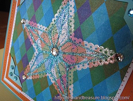 Star Card 26 May,2011 011