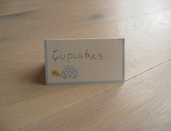 placecards-turtle