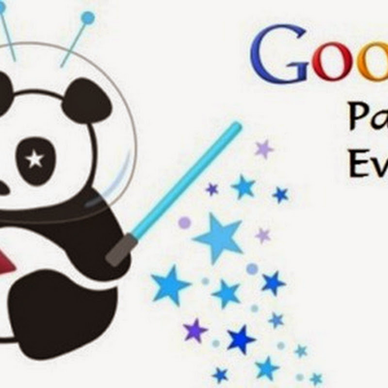 Il mio sito non viene visitato. Sarà mica colpa del Panda?