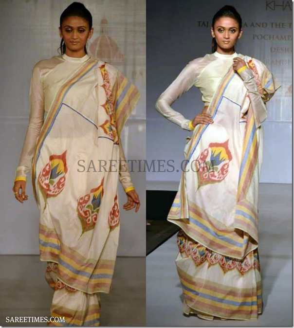 Rahul_Mishra_Pochampally_Saree