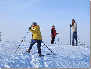 Лыжи 049