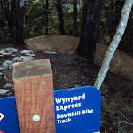2011 Wynyard DH Upgrade