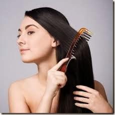 bahan alami untuk kesehatan rambut