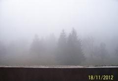 Fog 001